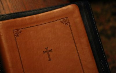 What Does the Bible Mean? Jesus Wants You to Know for Yourself